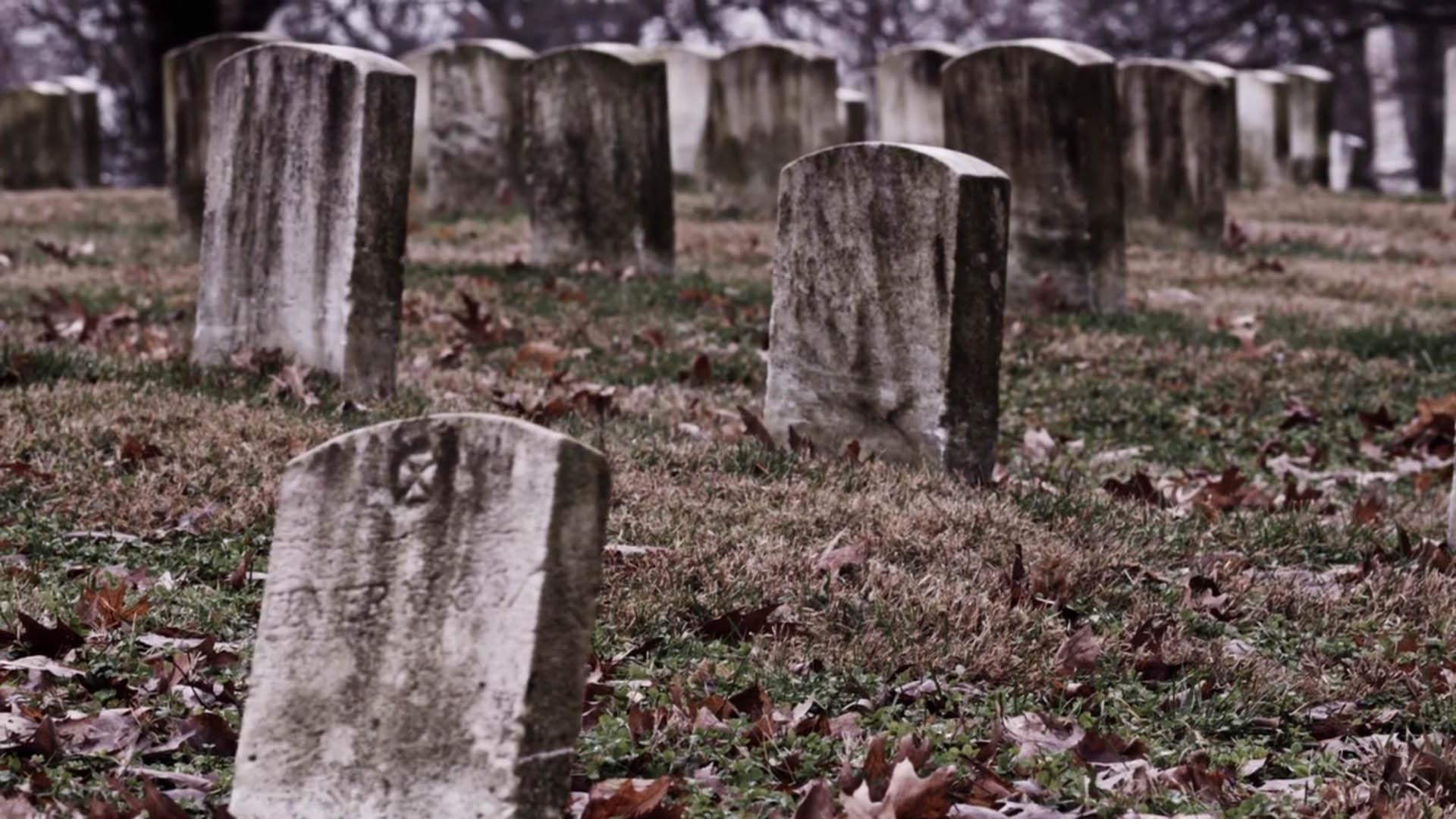 cryo-_0004_graves
